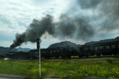 観光列車大集合~~。観光列車サミットin人吉球磨@桜はまだの熊本へ その3