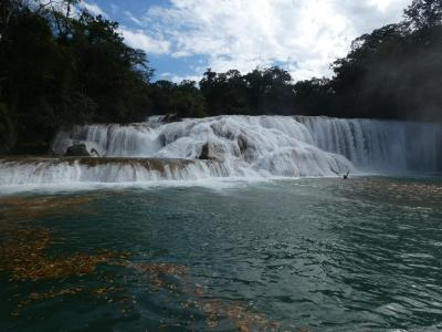 メキシコ パレンケ郊外 (Misol-Ha/Aqua Azul/Palenque, Chiapas, Mexico)