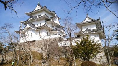 伊賀上野城と忍者ショー