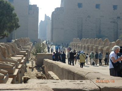古代エジプトをめぐる時空旅 2日目①(ルクソール東岸)