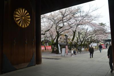 東京散歩 靖国神社に桜を見に行きました。