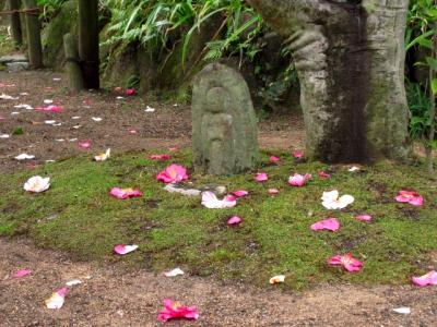 国宝・新薬師寺と椿咲く白毫寺へ