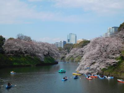 東京2019桜 【4】皇居