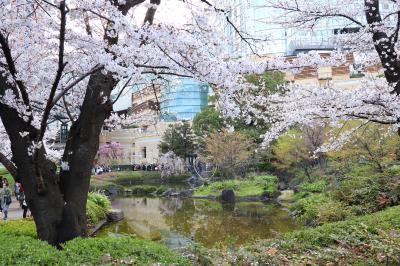 桜散歩東京、六本木ヒルズ~東京ミッドタウン・・・