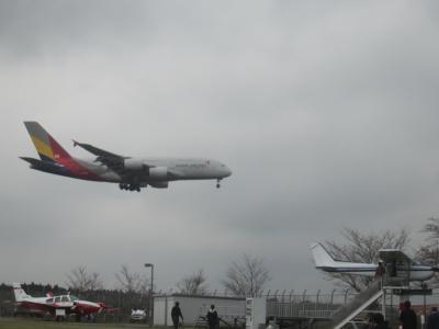 桜と飛行機を見に行って、成田空港A滑走路を一周してしまった…