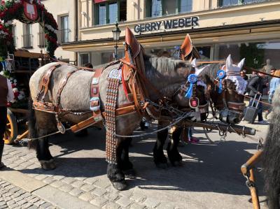 Munich 春 観光