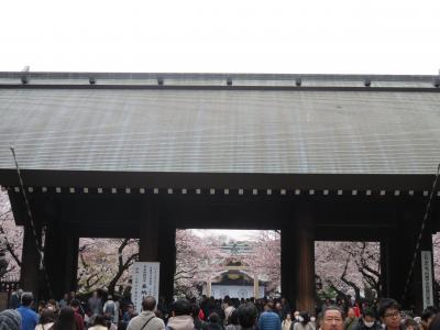 東京都心の花見名所へ~靖国神社~