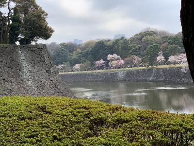 春季皇居乾通り一般公開~浅草へ