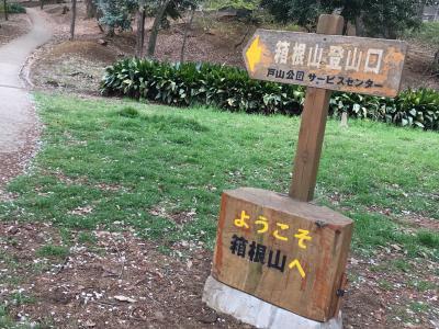 桜最前線の箱根山へ登山、えっ標高44m?山麓には万年湯っ新大久保って??、反省会って新宿西口の横丁?の登山ツアー