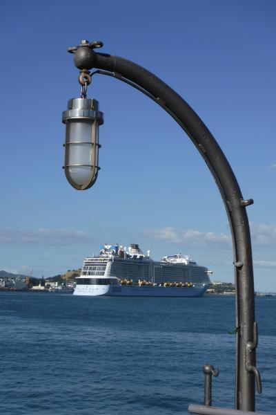 自然がいっぱいの国ニュージーランドのゲートシティ、オークランで暮らすように旅する一週間