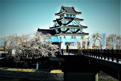 墨俣・一夜城の桜