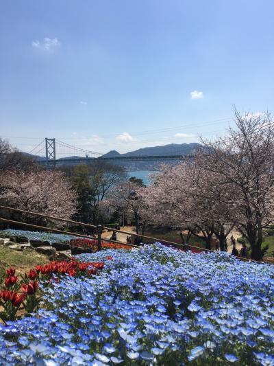 山口&門司港☆山口の桜、ロバート秋山の父と兄のお店