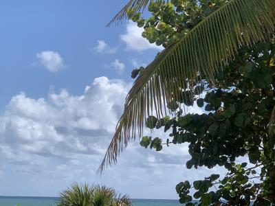Miami Florida Relatives Travel Snapshots!