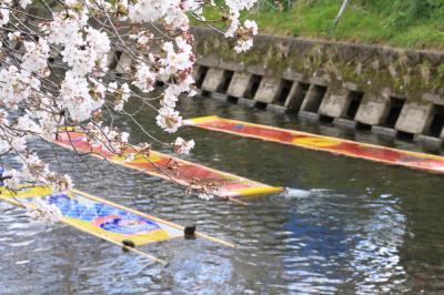 Petit Day Trip -- 新しい時代を迎えた、愛知の桜の名所「五条川」と「のんぼり洗い」 --