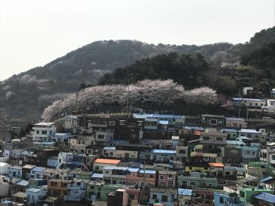 弾丸1泊2日★釜山 1日目