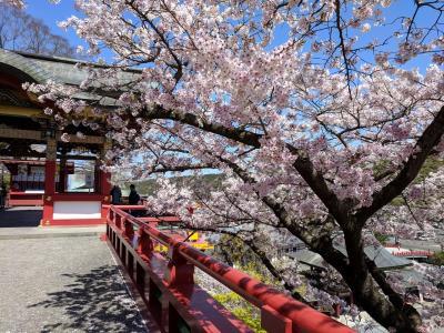 長崎の雲仙と佐賀の川上峡へのドライブ