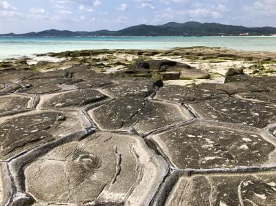 うりずんの沖縄へ ~ 久米島満喫♪絶景!畳石・イーフビーチ & 島グルメ