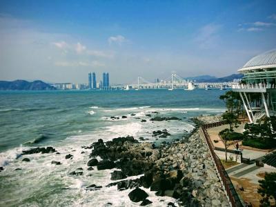 気ままに!海雲台散歩とKKday釜山シティツア-バスに乗車
