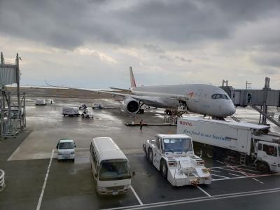 アシアナ航空で行くソウル