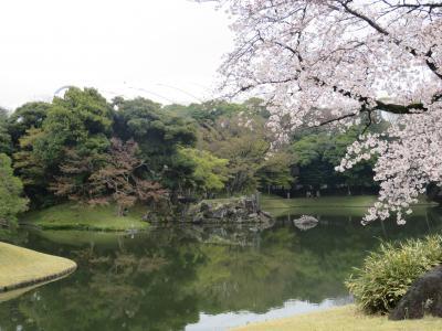 東京都心の花見名所へ~小石川後楽園~