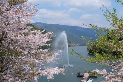 二万本の桜と人吉グルメ!ちょっとおまけドライブ旅