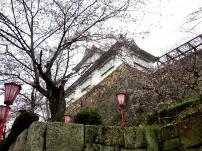 おじさんの一人旅(2)、岡山・津山青春切符の旅・・「津山さくら祭り」