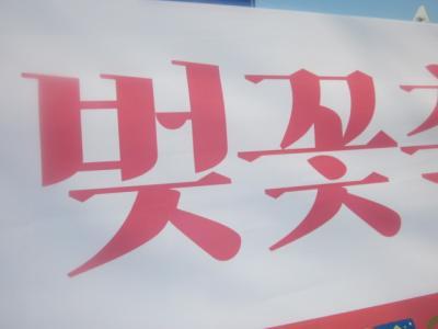 2019春・平成最後の海外旅行(パート6:古都慶州にて、桜三昧の一日)