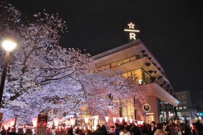 目黒川の桜並木が満開の時に今話題のSTARBUCKS RESERVE FOASTERY TOKYOに行ってみた!