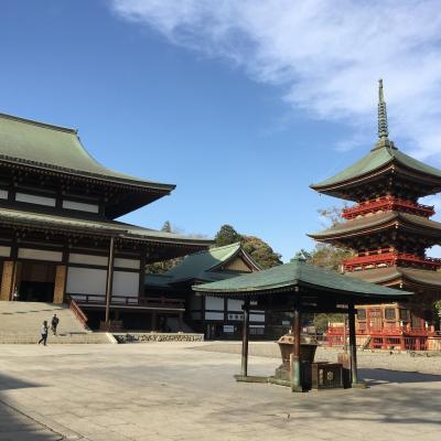 桜を見つつ成田山へ