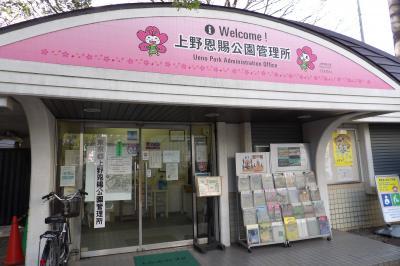 上野公園の桜-2019年