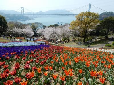 関門海峡お花見スポット