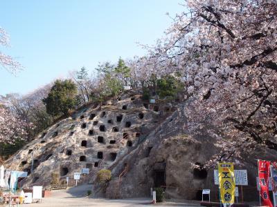 『平成』最後のお花見は埼玉の不思議スポット吉見百穴へ