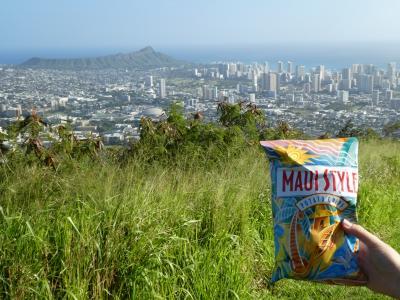 【2019年オアフ島】その3 今回もハワイを歩くのだ! 聖パトリックデーのパレードと昼間のタンタラスの丘へ行く