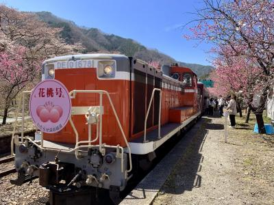 わたらせ渓谷鐵道花桃まつり