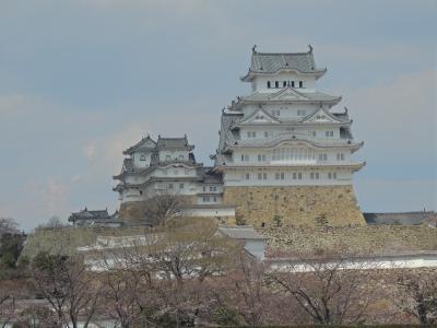 姫路城巡り~桜が満開