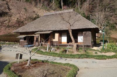 西山荘、袋田の滝 その2
