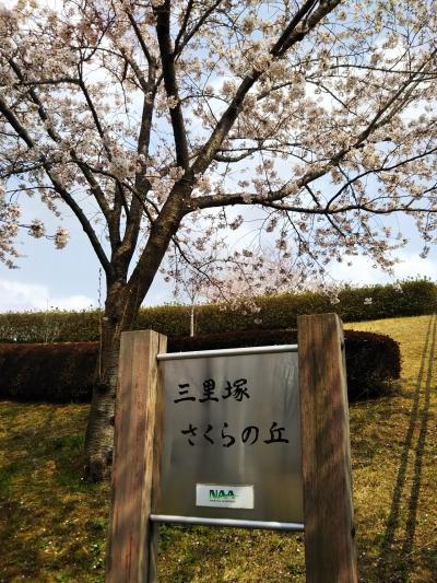 三里塚桜の丘