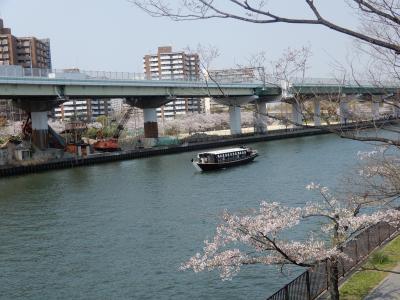 春の桜を満喫~都島ぶらり 2019