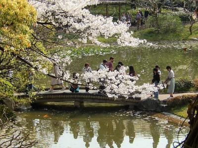 久しぶりに皇居・東御苑を訪問しました①大手門~二の丸庭園~汐見坂まで