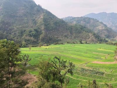 ネパール3日目 ポカラへ