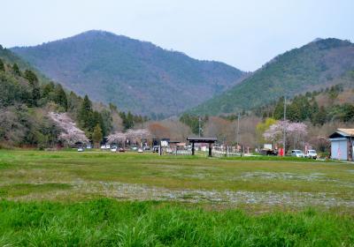 小谷山(495m) 城跡を歩く