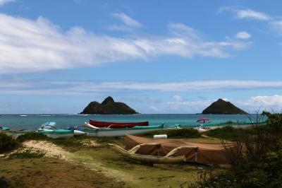 Hawaii② キラウエア火山を見たい夫&ガーリックシュリンプを食べたい妻が選んだオプショナルツアー