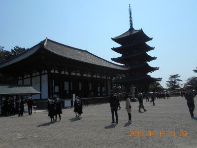 近鉄奈良駅周辺を楽しむ
