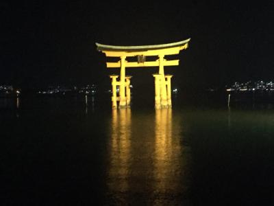 錦帯橋・宮島 桜満開