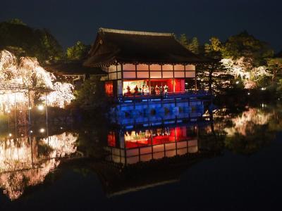 リベンジ京都の旅 平安神宮 平成最後の紅しだれコンサート