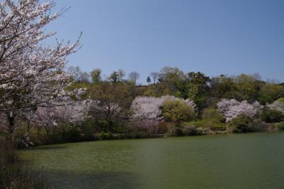 2019年4月6日(後半)会議で帰国&伊豆長岡旅行