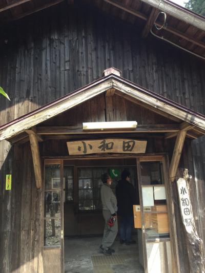 飯田線秘境駅号(静岡県)