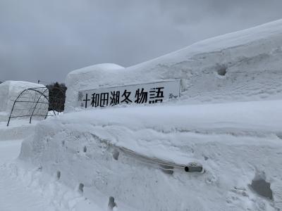 201902-02_十和田湖冬物語2019  Lake Towada Winter Festival (Aomori)
