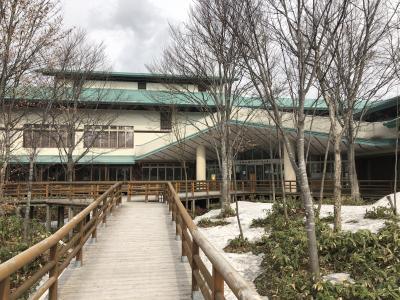 日本の世界遺産No. 19 : 白神山地自然環境保全地域のブナ林と現存天守閣を持つ弘前城を訪れる