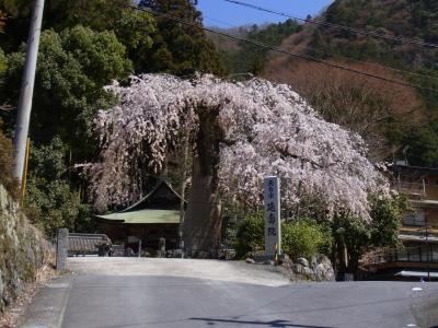 原2で赤目四十八滝ツーリングと瀧自慢 そして延寿院としだれ桜